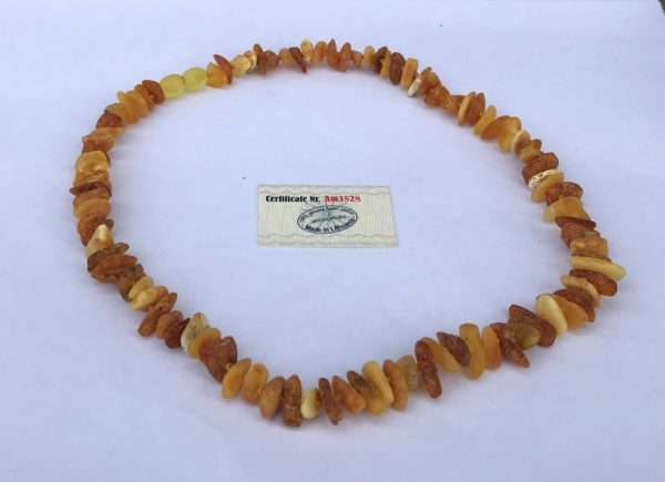 Multi Baltic Amber